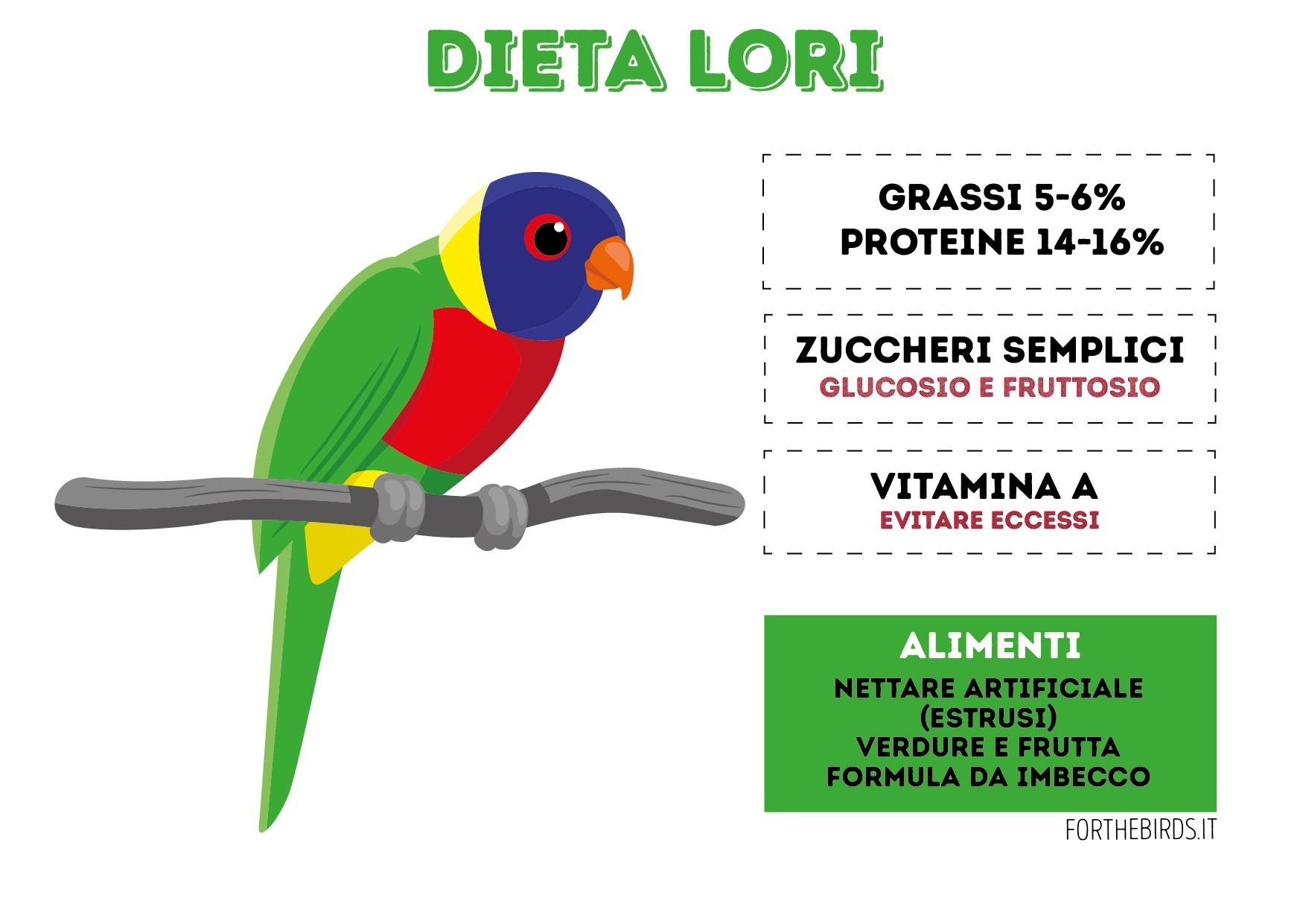 Dieta Lori e lorichetti